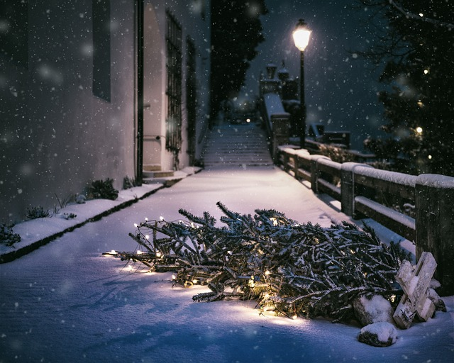 Christmas, Snow, Night, Cold, Winter, Fell Down, Lamp