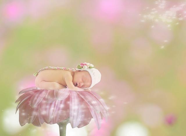Baby, Gerbera, Female, Girl, Bokeh, Pink, Sleep