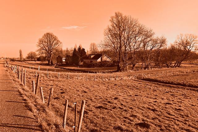 Meadow, Fence, Post, Fence Post, Farmhouse, Road, Trees