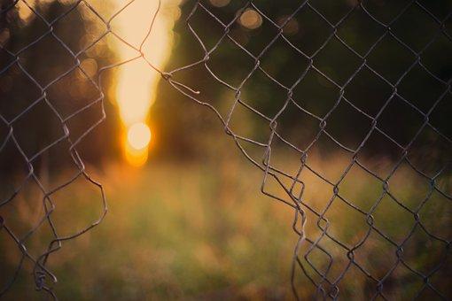 Background, Fence, Freedom, Grid, Cage, Prison, Light