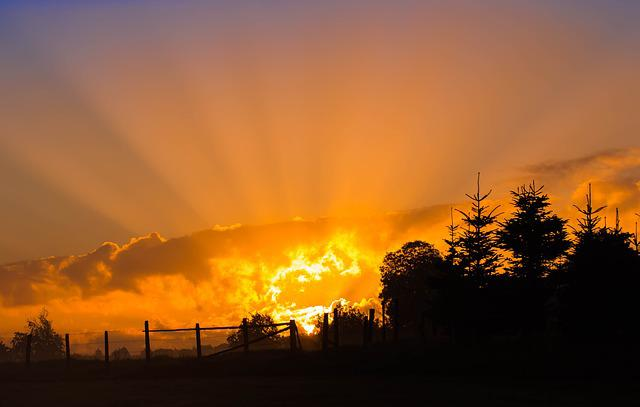Sunrise, Sun, Sunbeam, Sky, Skies, Rays, Forest, Fence