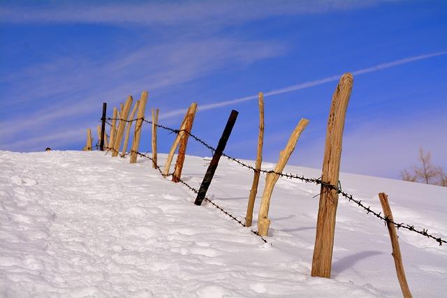 Snow, Winter, Wood, Fence