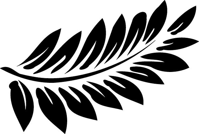 Leaf, Fern, Black, Frond