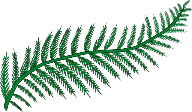 Branch, Fern, Forest, Frond, Plant, Wood, Woodland