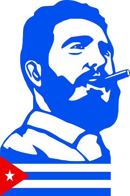 Fidel Castro, Castro, Cuba, Fidel, Communism, President