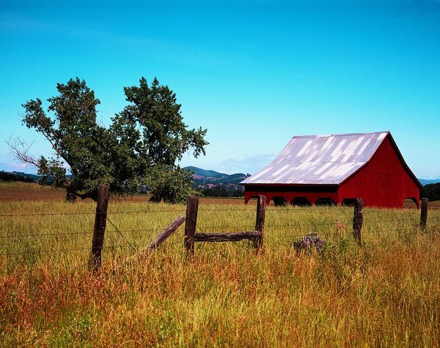 California, Hut, Log Cabin, Barn, Vacation, Field Barn