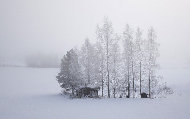 Finland, Snow, Field, Cold, Cabin, Trees, Winter