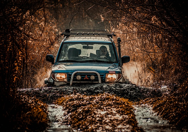 Offroad, Local, Car, Dirty, Mud, Toy, Field, Hobby