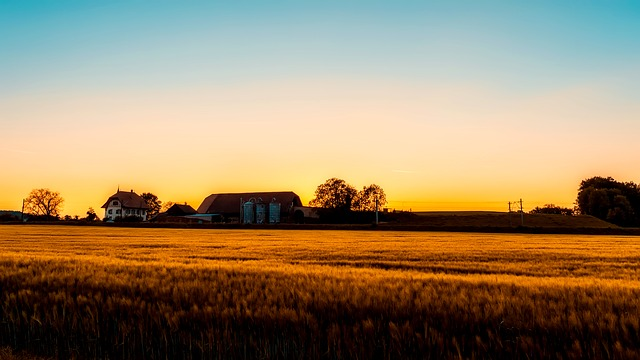 Sunset, Dusk, Farm, Barn, House, Field, Crop