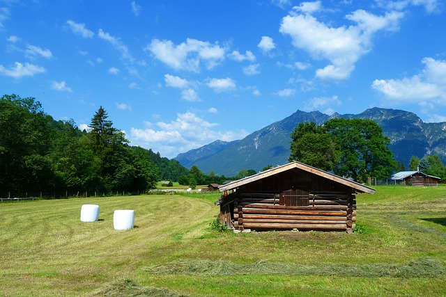 Field, Hay Balls, Log Building, Shed, Mountains, Alp