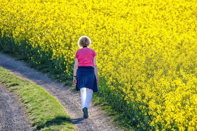 Nature, Landscape, Field Of Rapeseeds, Oilseed Rape