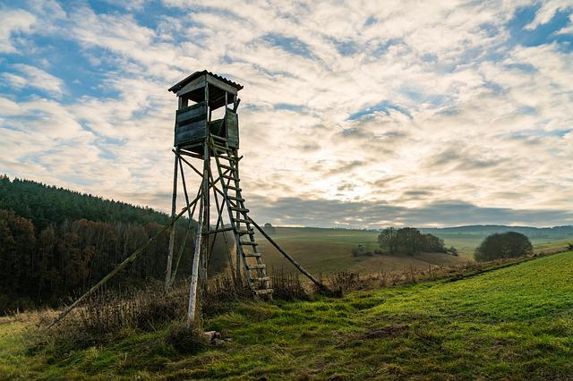 Perch, Hunter Was, Privacy, Hunt, Forest, Fields