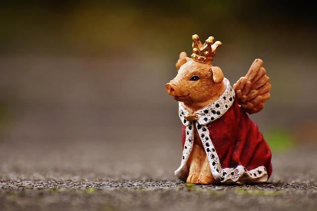 Lucky Pig, Guardian Angel, Fig, Funny, Cute, Crown