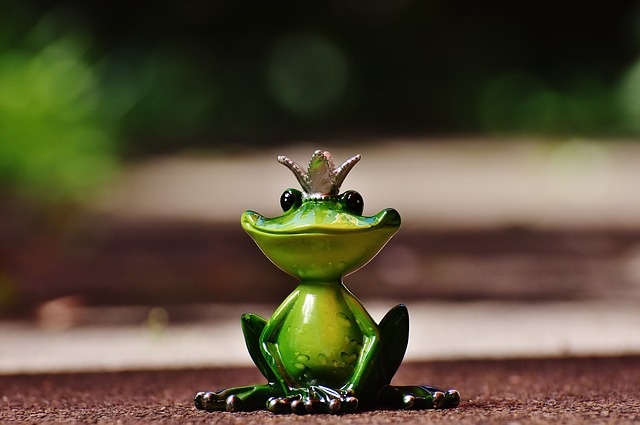 Frog, Frog Prince, Crown, Fig, Cute, Funny, Sweet, Fun