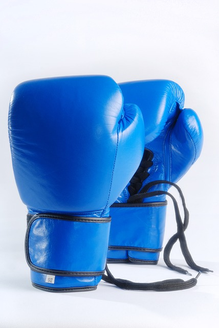 Blue Boxing Gloves, Isolated On White Background, Fight