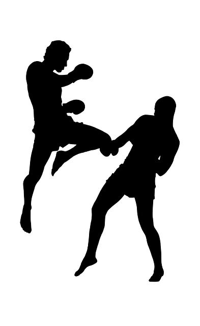 Silhouette, Fight, Sports, Strong Men, Jumping, Boxing