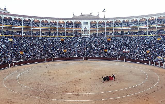 Bullfight, Torero, Corrida, Arena, Fight, Spain, Madrid