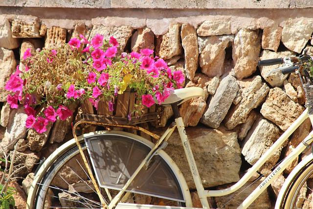 Mallorca, Cala, Figuera, Holiday, Cala Figuera