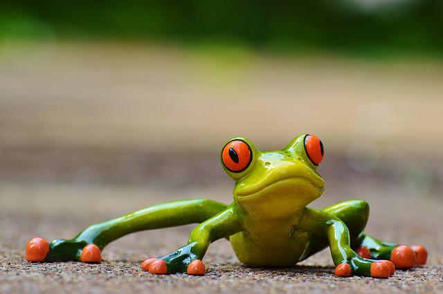 Frog, Funny, Figure, Cute, Animal, Fun, Green, Sweet