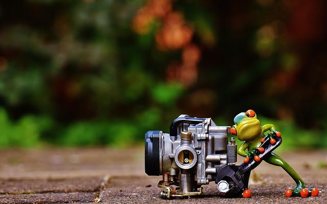 Frog, Mechanic, Screwdrivers, Carburetor, Figure