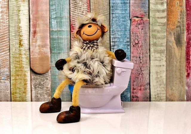Toilet, Sheep, Figure, Loo, Cute, Funny, Wc, Session
