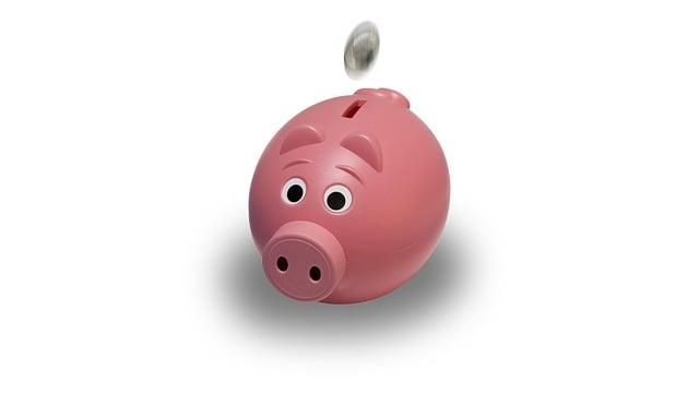 Piggy Bank, Coin, Pink, Piggy, Bank, Finance, Money