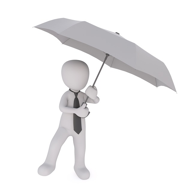 Umbrella, Business, Business Man, Financial World