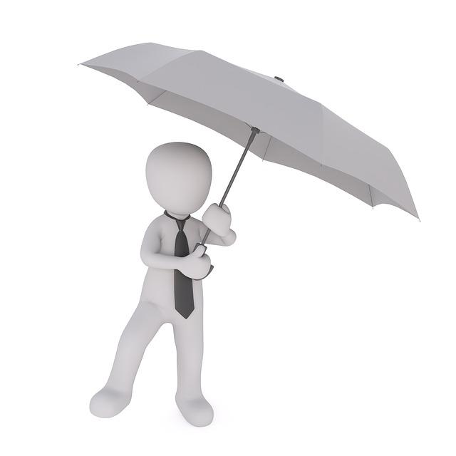 Umbrella, Business, Business Man, Financial World