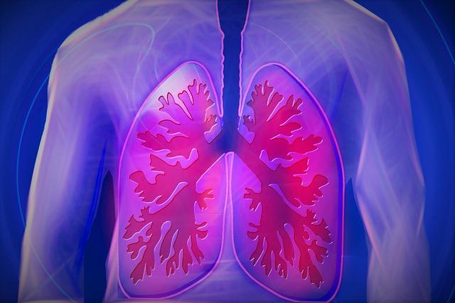 Upper Body, Lung, Copd, Disease, Doctor, Findings