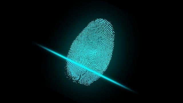 Finger, Fingerprint, Security, Digital, Identity