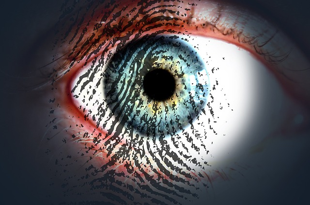 Eye, Fingerprint, Eye-print Check, Iris