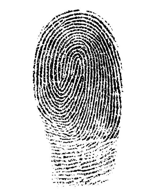 Fingerprint, Mark, Finger Mark, Identification
