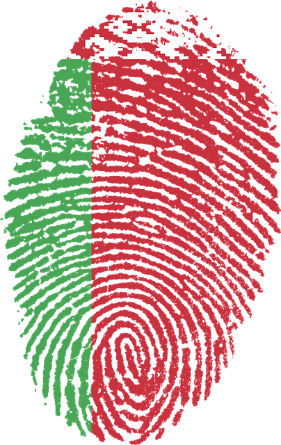 Belarus, Flag, Fingerprint, Country, Pride, Identity