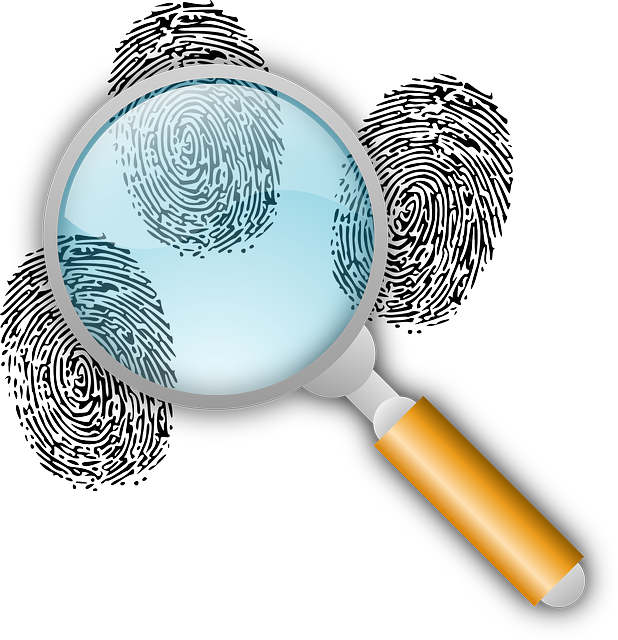 Detective, Clues, Police Work, Find, Fingerprints