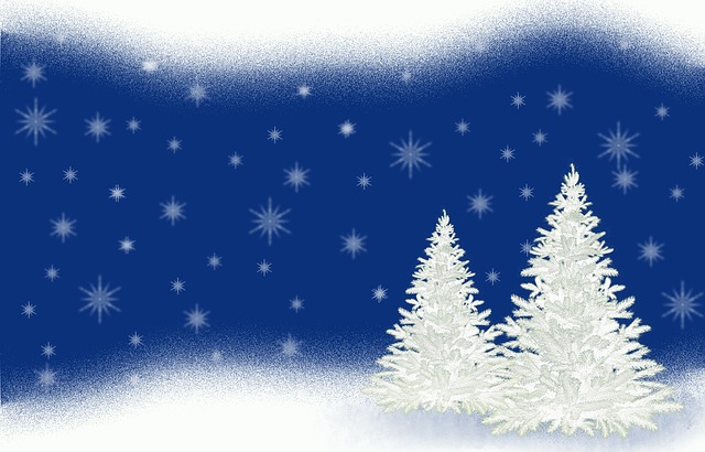 Christmas Tree, Christmas, Fir, Christmas Decoration