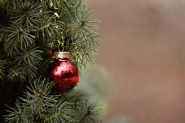 Christmas, Tree, Fir Tree, Christmas Tree, Ball