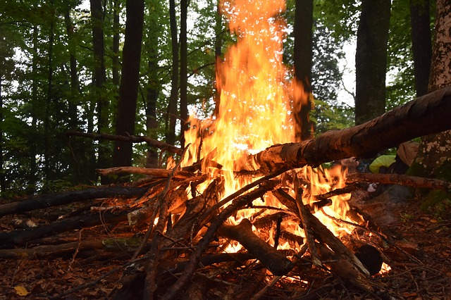 Fire, Wood, Forest, Firewood Stack, Flame, Adventure