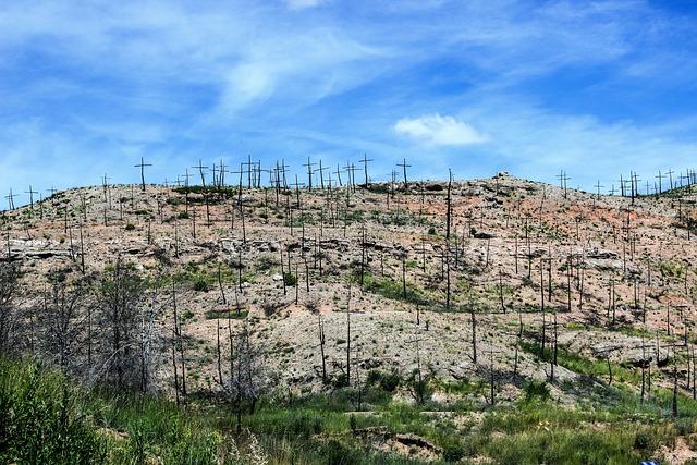 Fire, Desolation, Crossings, Cruz, Forest