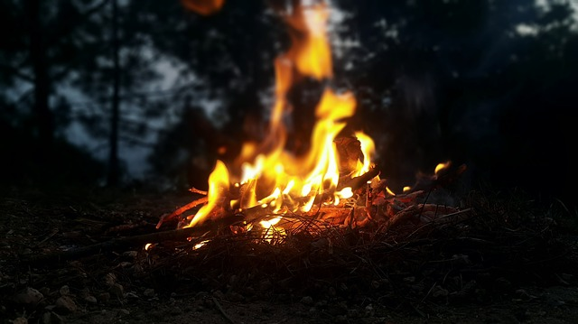 Fire, Outdoors, Nature, Flame, Forest, Hot, Campfire