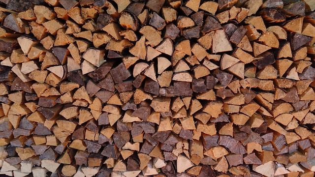 Wood, Holzstapel, Firewood, Growing Stock, Log