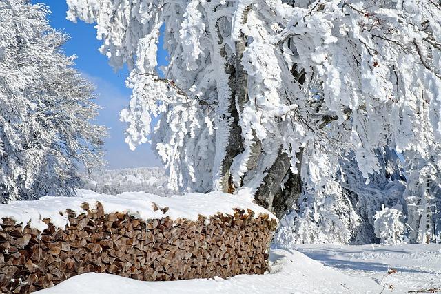 Wood, Firewood, Holzstapel, Combs Thread Cutting