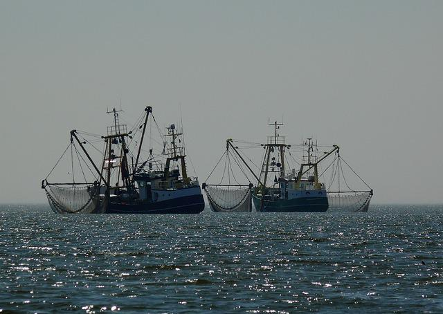 Boats, Fischer, Fishing Boat, Fishing Nets, Fishing