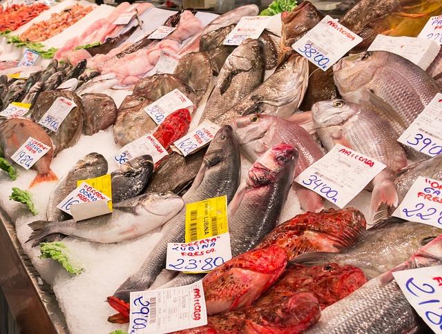 Fish, Sea, Seafood, Market, Fish Market, Fish Cakes