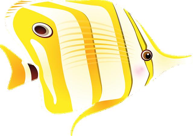 Fish, Tropical Fish, Sea, Exotic Fish, Long Nose