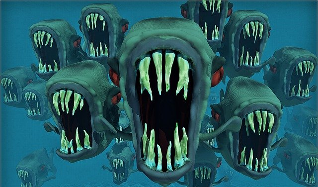 Piranhas, Nightmare, Fish Swarm, Fish, Water, Animals