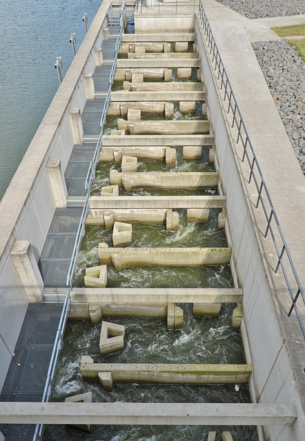 Fish Ladder, Trough Stausee, Bitterfeld, Trough