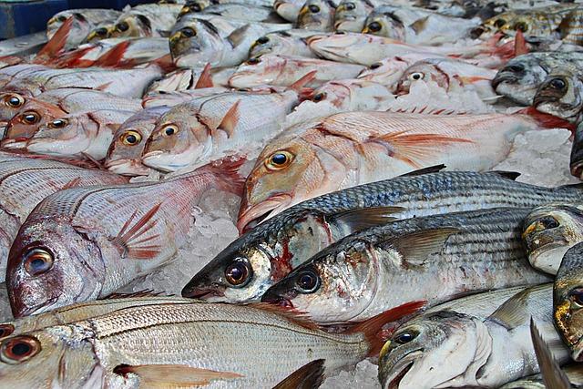 Fish, Fishing, Traditional Fishing, Fish Market, Food