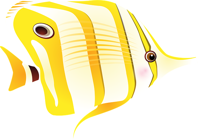 Butterfly Fish, Fish, Tropical Fish, Exotic Fish