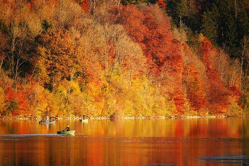 Autumn, Angler, Boot, Lake, Mood, Water, Fish