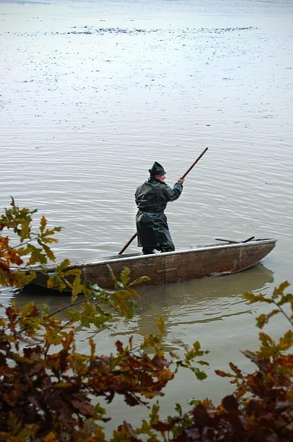 Rowboat, Fisherman, One, Water, Pond, Bush, Wet